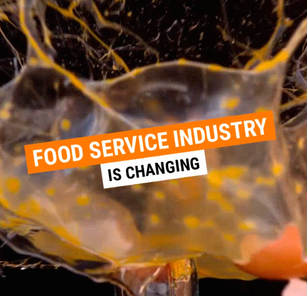 Food Service Liquidation